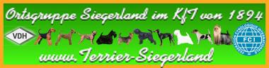 Banner der Ortsgruppe Siegerland